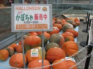 10/25 かぼちゃ